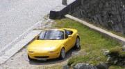 Yellow-NA-NA_1