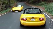 Yellow-NA